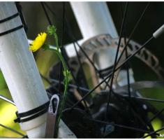 slatina_moslavina_biciklom_007