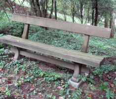20141004_slatina_arboretum_084