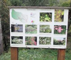 20141004_slatina_arboretum_085