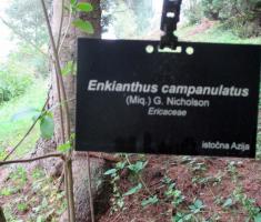 20141004_slatina_arboretum_086