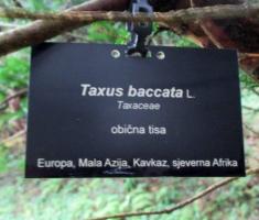 20141004_slatina_arboretum_087