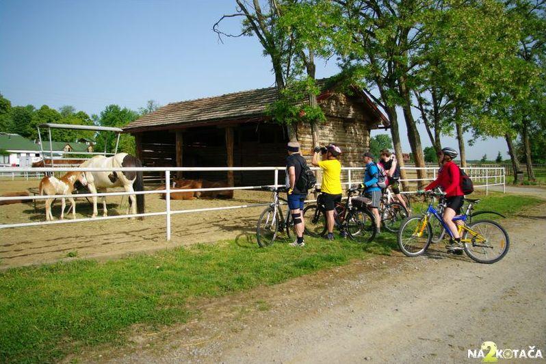 Skupina biciklista na jednodnevnom pedaliranju...